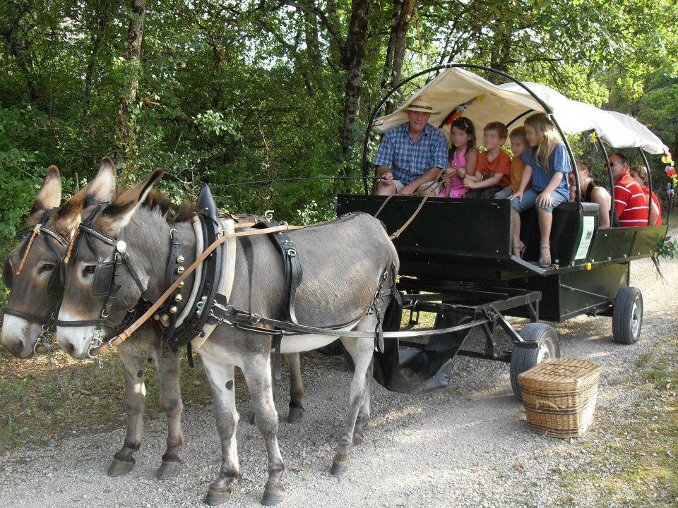 Promenade touristique enfants calèche Cahors
